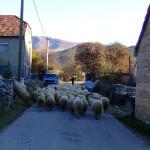 Guge village