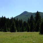 Šatorina, the view from Dokozina Plana.