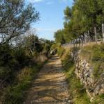 The section from Matkići to Mundanije village.