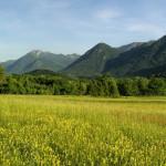 Rizvanuša valley and Visočica summit in the background