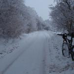 The paved road towards Šipački Brijeg village