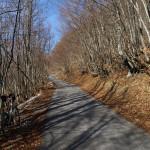 The paved road near Baške Oštarije