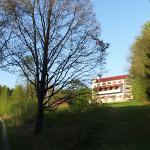 Omanovac