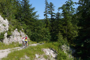 The section from Kuk to Platak