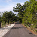 The paved road at Vidova Gora plateau.
