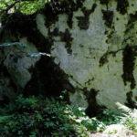 Pisani Kamen heritage