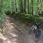 The downhill section from Mrzljak to Stubičke Toplice