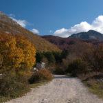 The carriageway section in Vrbanj village