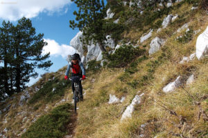 The downhill ride