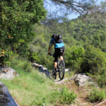 The singletrack near Polače village on The Island of Mljet