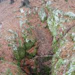 Bazgovica pit
