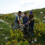 Shepherds tested my bike