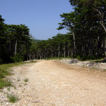 The unpaved road section at Vidova Gora plateau
