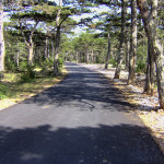 The paved road section at Vidova Gora plateau