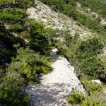 The singletrack section from Vidova Gora to Bol