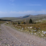 The carriageway section