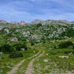 The section from Prosenjak to Jasle