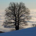 The landscape at Sveta Gera