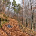 The trail near Trakošćan
