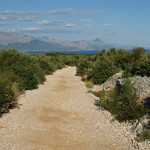 The trail to Puntinak