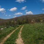 The trail in Bravčev Dolac.