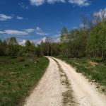The carriageway on Ječmište plateau