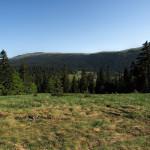 Velika Drežnica plateau