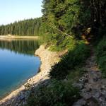 Rocky section at the coast of Crno Jezero.