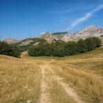 The carriageway on Zelengora mountain