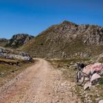 At the saddle on Zelengora mountain.