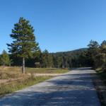 The paved road from Ilirska Bistrica to Sviščaki