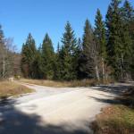 The unpaved road from Ilirska Bistrica to Sviščaki