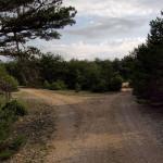 The carriageway at Vidova Gora plateau.