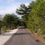 The paved road at Vidova Gora plateau.