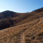 The singletrack next to Hahlići
