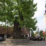 Gupčeva Lipa restaurant and church