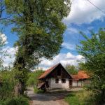 Vucelići village