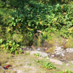 The spring of water in Sikira region