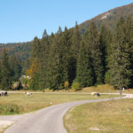Štirovača valley