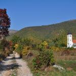The church in Plavno