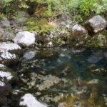 The spring of Zrmanja river