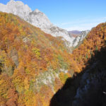 The canyon of river Hrčavka.