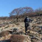 The final ascent section to the ridge of Cres.