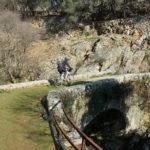 The bridge near Beli