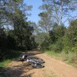 The unpaved road next to Ivanje Polje on The Island of Mljet