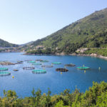 Fish breeding site in Sobra bay on The Island of Mljet