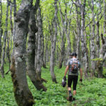 The hiking trail towards Ozeblin peak