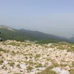 The view from Mali Vrh peak on Velika Golija mountain