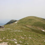 This is Veliki Vrh, the highest elevation point of Velika Golija mountain.
