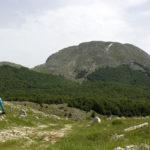 Towards Velika Vlajina peak